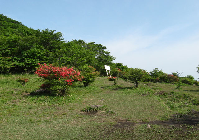 arayama04