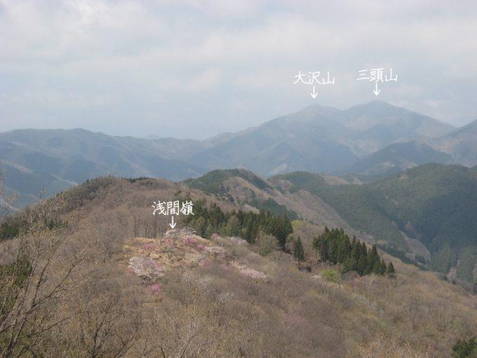 三頭山と大沢山(松生山登山道より)
