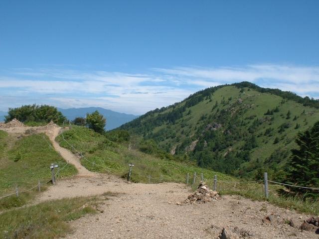 大菩薩嶺への尾根道