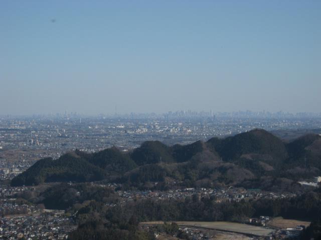 スカイツリーをはじめとする都心の高層ビル群の写真