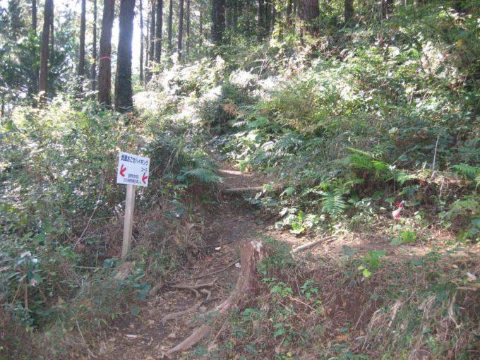 幕岩から駐車場への登山道の分岐点