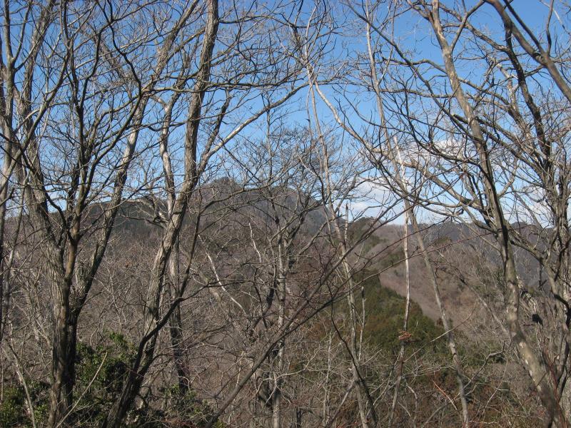 鶴脚山山頂から見える大岳山