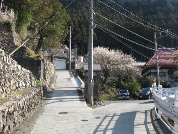 登山口手前の舗装道路