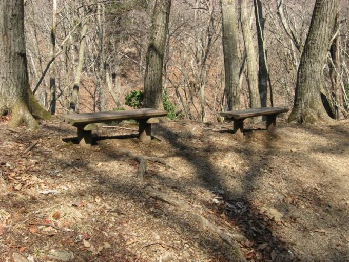 舟井戸のベンチ