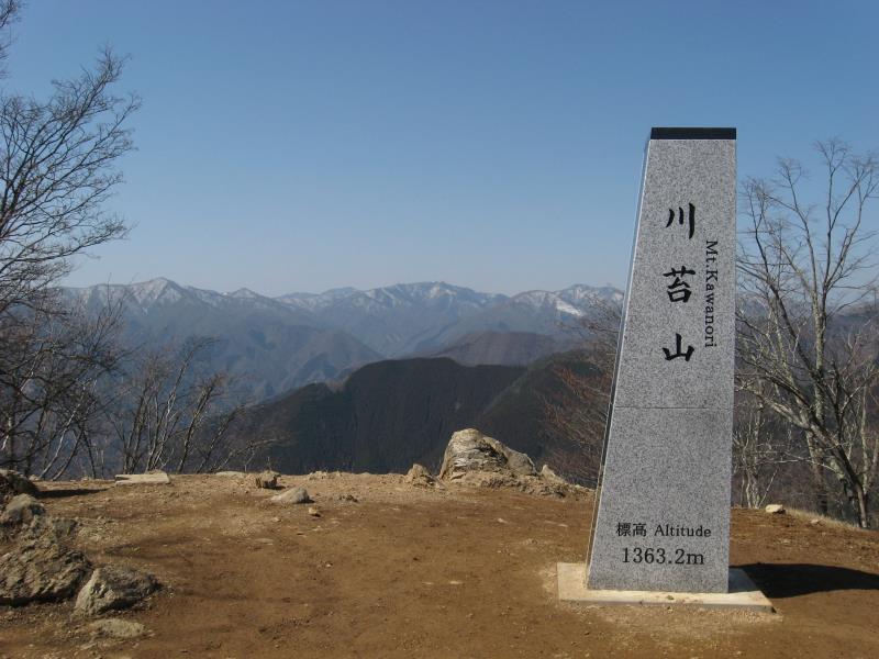 川苔山(川乗山)