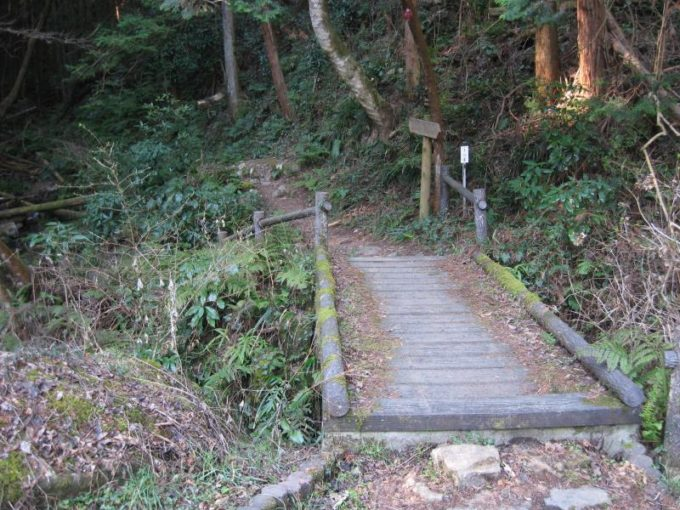 橋を渡って森の中へ