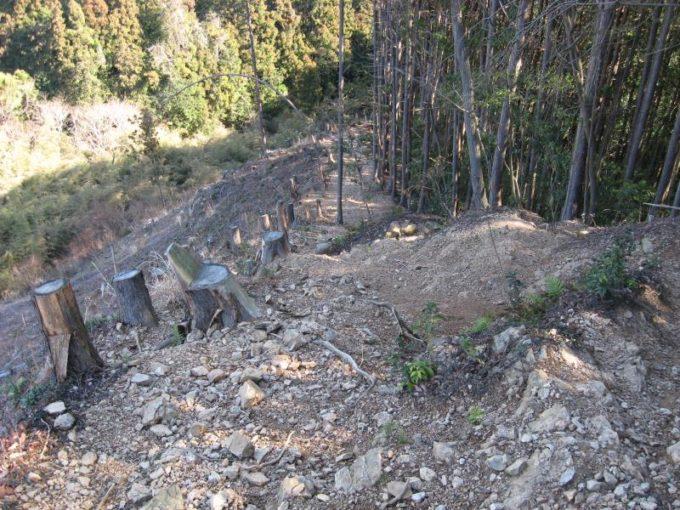 樹木がすべて伐採されたヤセオネ峠