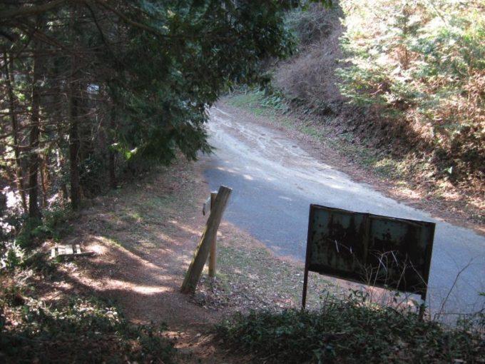 舗装道路を横断