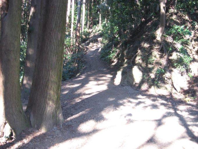 小仏峠から景信山への入口