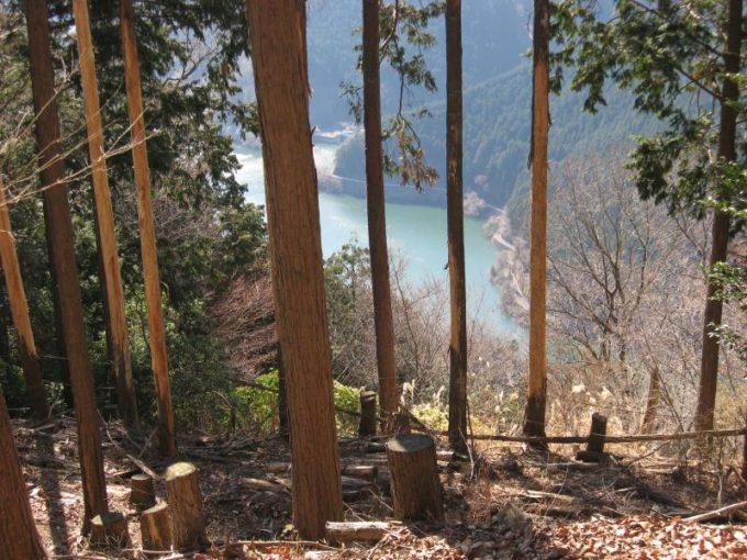 登山道から見える名栗湖(有馬湖)