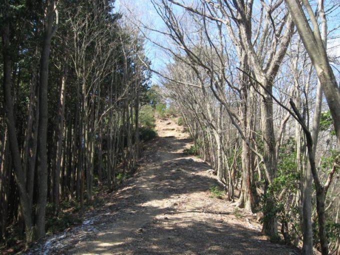 蕨山展望台前の急な登り坂