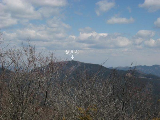 蕨山展望台から見える武川岳