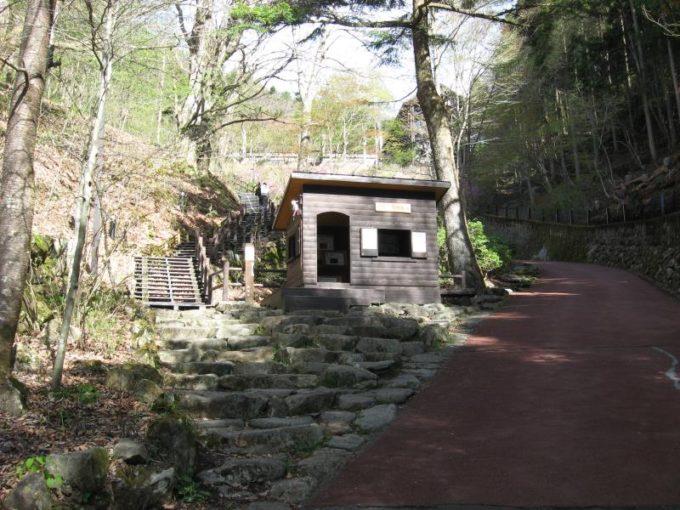 森林館(右)と三頭大滝(左)への分岐