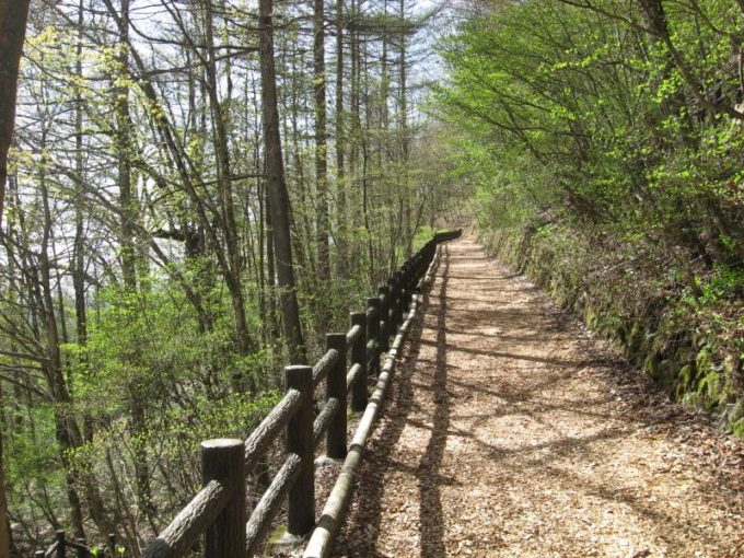 大滝の路(森林セラピーロード)