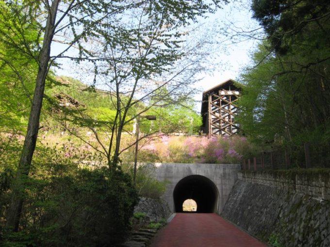 森林館手前のトンネル