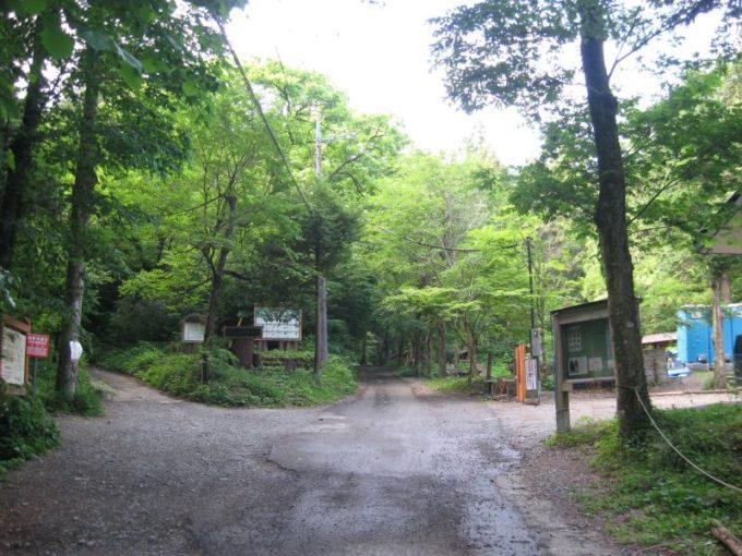 日影沢キャンプ場横の分岐