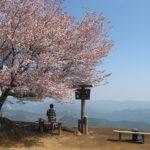 棒の折山の山頂の桜