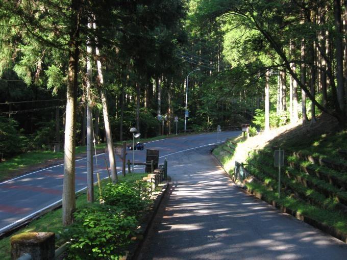 車道から駐車場への導入路