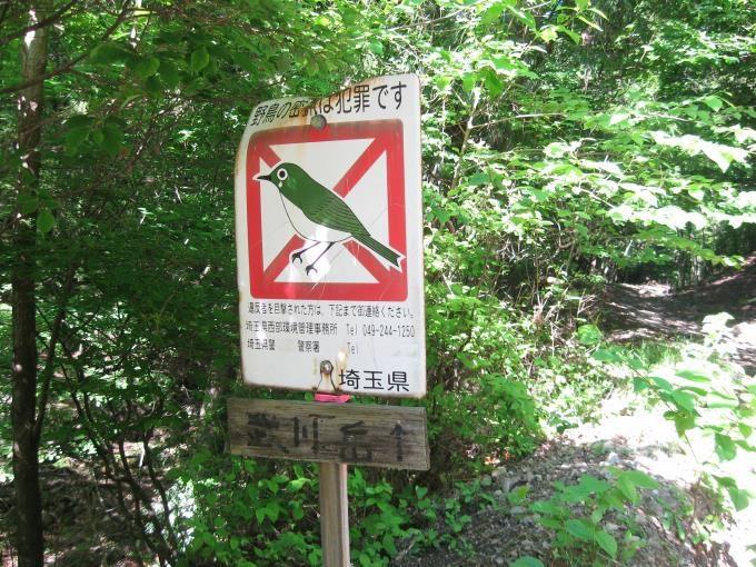 林道の合流場所にある案内板