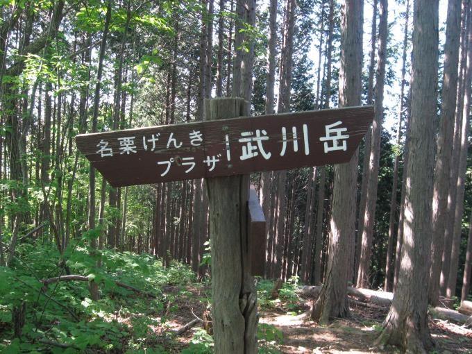 分岐にある案内板(左:名栗げんきプラザ、右:武川岳)