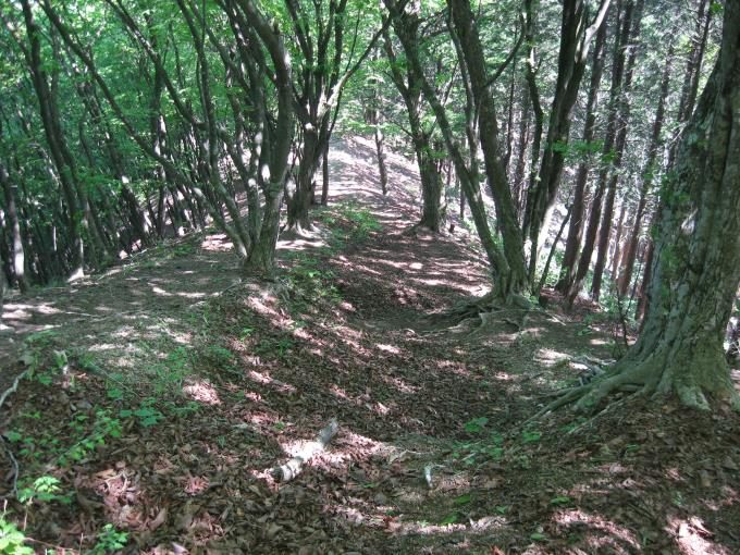 蔦岩山の先にある急な下り坂