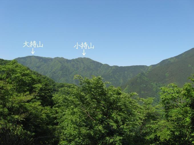 林道から見た小持山と大持山