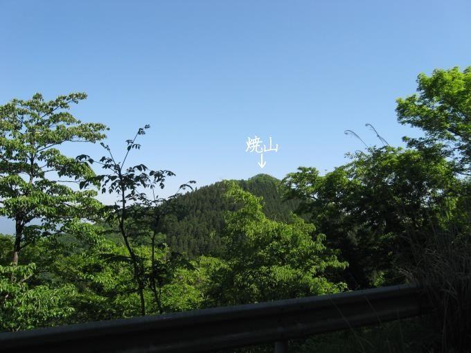林道から見た焼山