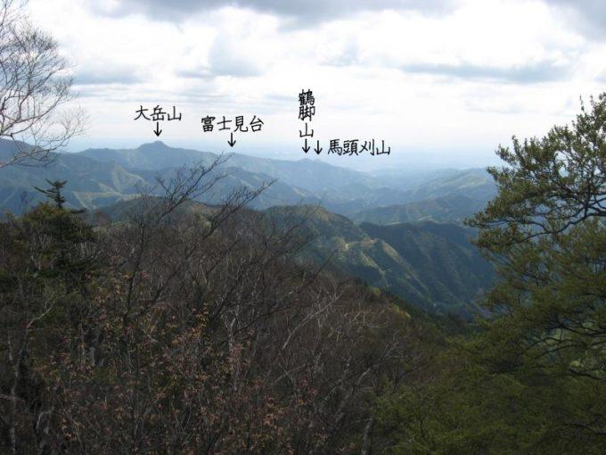 大岳山方面の眺め