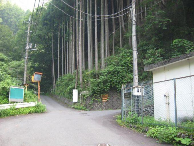 水根沢林道との分岐
