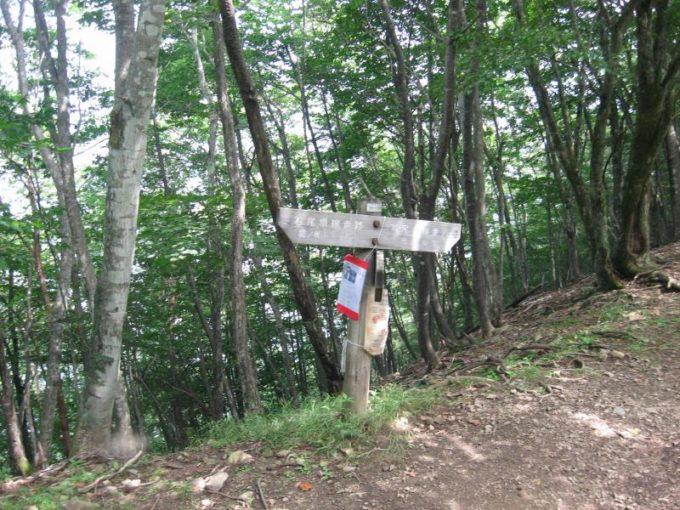 鷹ノ巣山への案内板