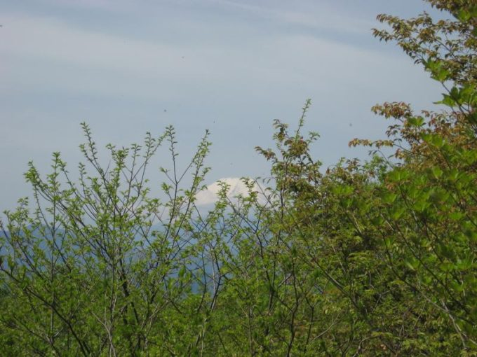 熊倉山からわずかに見える富士山
