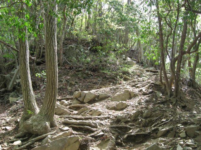 生藤山山頂手前の岩場
