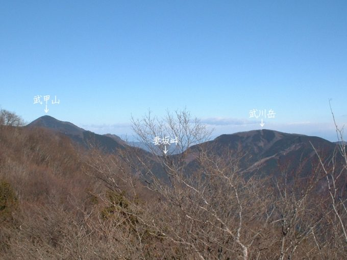 武川岳と妻坂峠(蕨山展望台より)