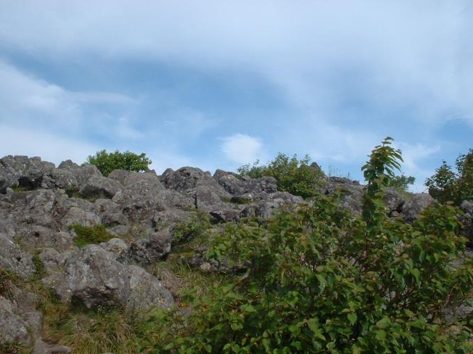山頂直下の登山道
