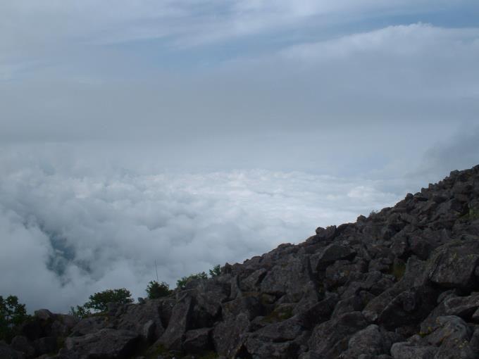 蓼科山の山頂から見た雲海