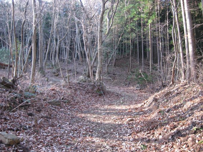 笠山への登山道