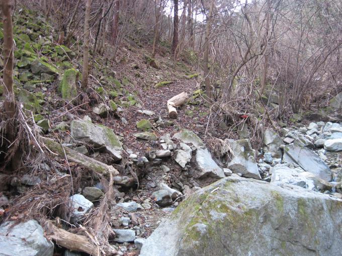 沢の向かいの斜面にある登山道