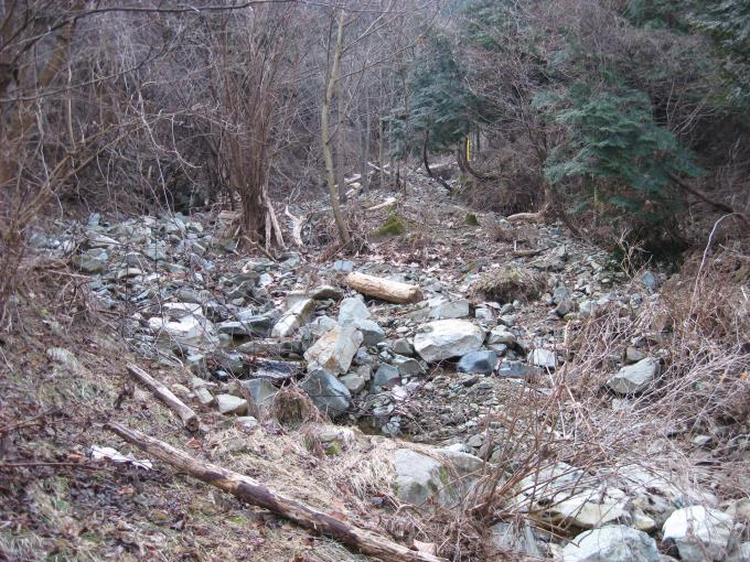 林の中へ続く登山道