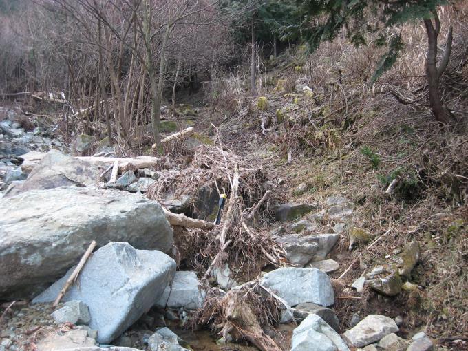 荒れ果てたハイキングルート