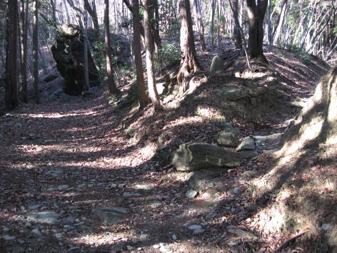 先の大きな石の手前が分岐入口