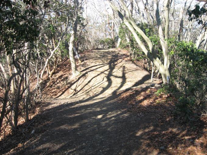 堂平山への分岐