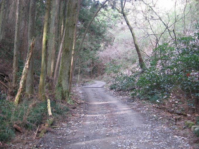 広い登山道