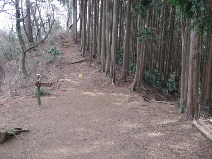 小下沢林道との分岐