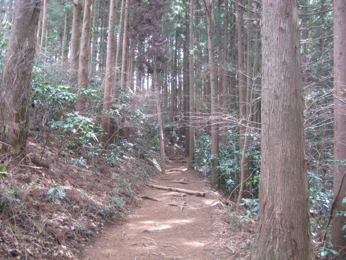 小仏城山への登山道