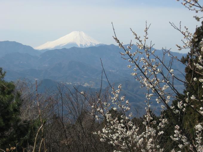 小仏城山山頂から見える富士山