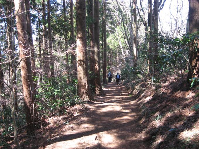 小仏峠への登山道