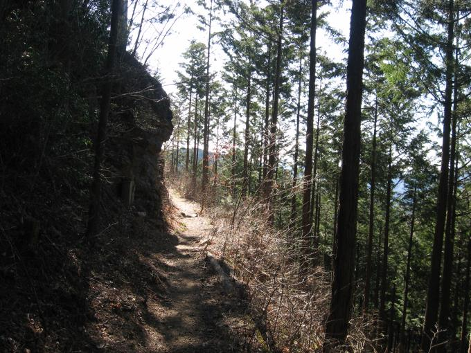 数馬分岐の先の登山道