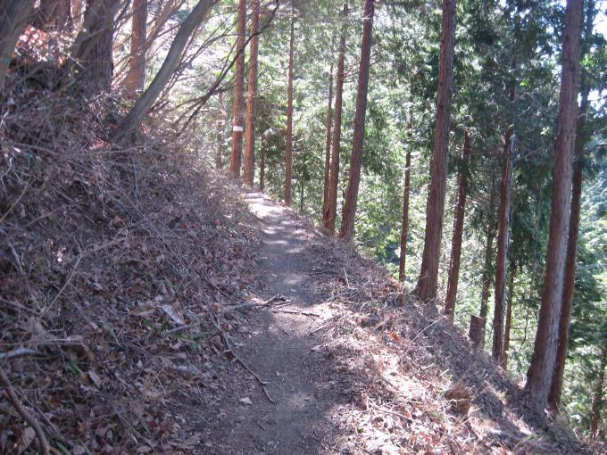 サル石の先の登山道