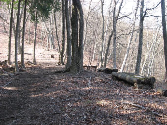 登山道沿いにあるベンチ