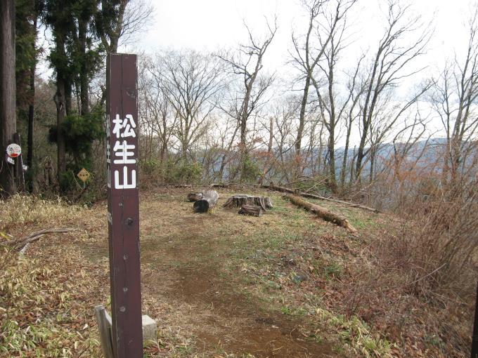 松生山山頂全景